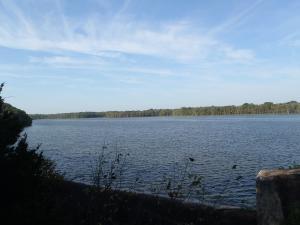 Spring Fork Lake